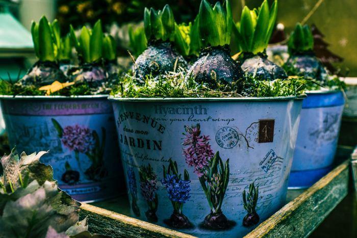 macetas como ideas para la decoración de jardines